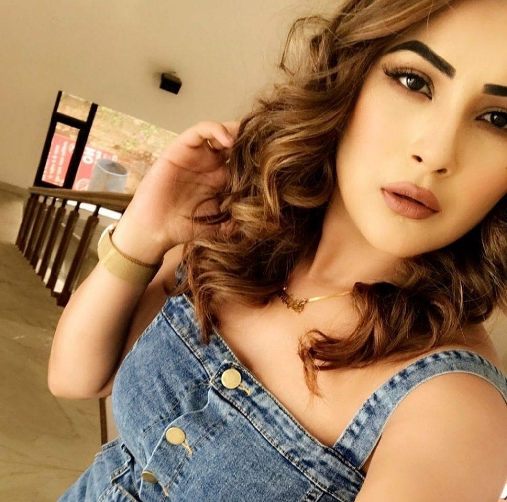 hot Shehnaz Kaur Gill
